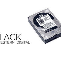 Western Digital Black WD4001FAEX 4 TB